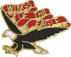 U.S. Army 101st Aviation Brigade Hat or Lapel Pin