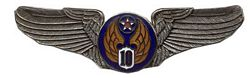 "U.S. Air Force 10th Air Corps Wings (2 7/8"")"
