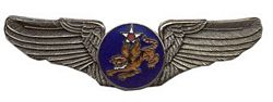 "U.S. Air Force 14th Air Corps Wings (2 7/8"")"